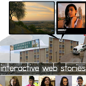 interactive web stories